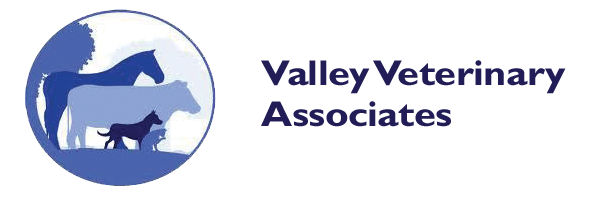 Valley Veterinary Associates logo